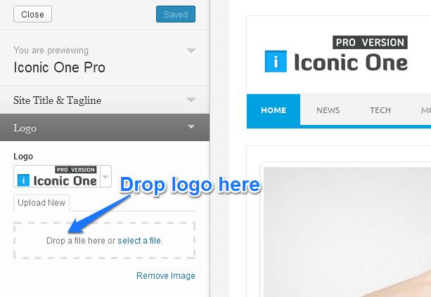 live customizer logo upload2