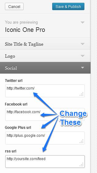 live customizer social buttons top2
