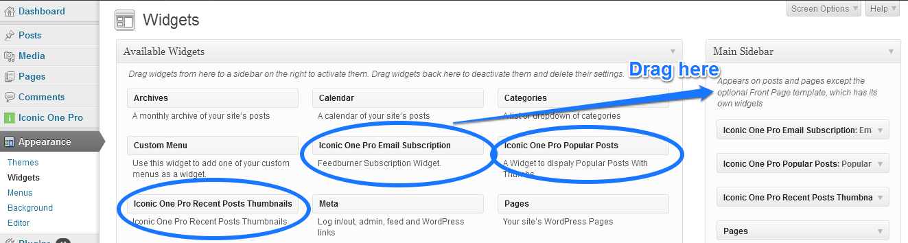theme with inbuilt email subscription form