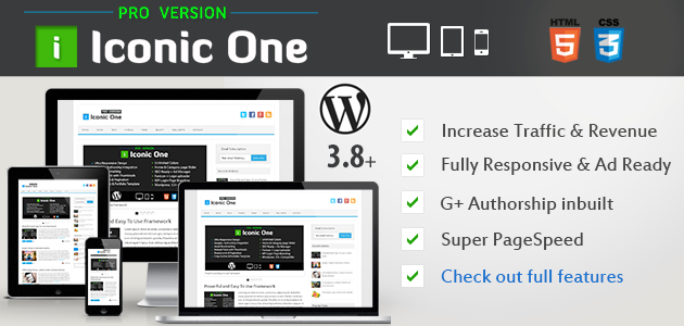 Best SEO Friendly Theme Responsive WP Theme